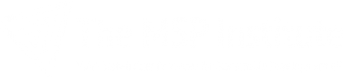 The MSP Institute